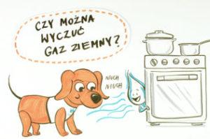Gazorek-nr-3-Czolowka-Final-315x209